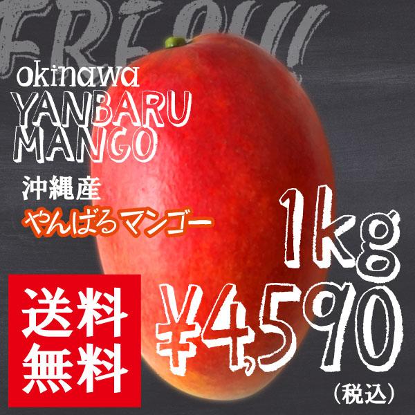 マンゴー1kg4590円全国送料無料