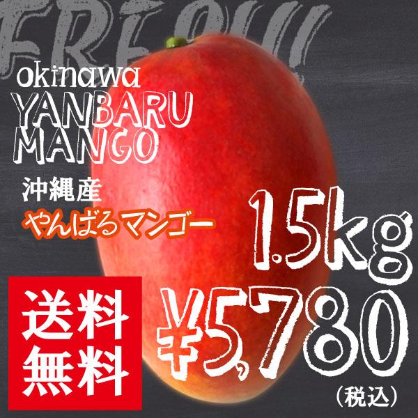 マンゴー1.5kg5780円全国送料無料